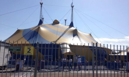 Cirque du Soleil acrobat falls on head during Brisbane show