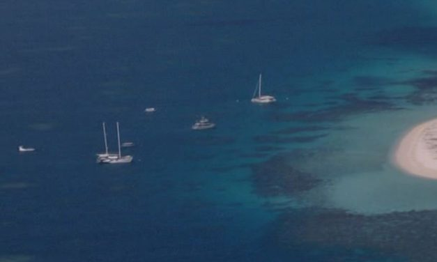 French tourists die after heart attacks on reef snorkelling tour off Cairns