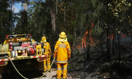 Fast-moving Cooktown fire threatens up to 25 properties