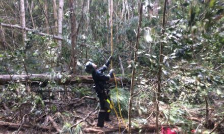 Helicopter crash: Passenger found dead in wreckage near Mt Carbine in far north Queensland