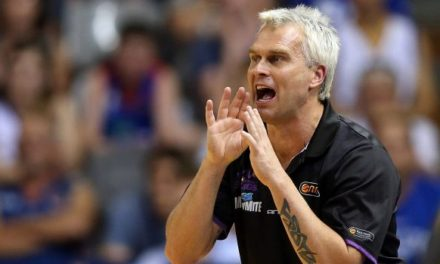 Australian basketball champ Shane Heal charged with fraud