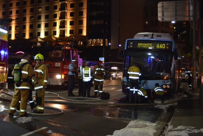Bus catches fire on George St in Sydney