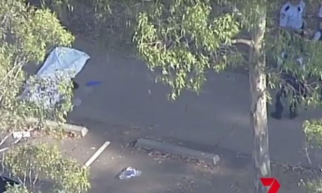 Wetherill Park shooting: One man believed to be dead, another critically injured