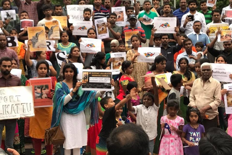 Jallikattu ban: Tamil community holds silent protest in Brisbane