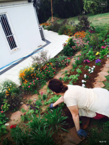 Sharon gardening at temple