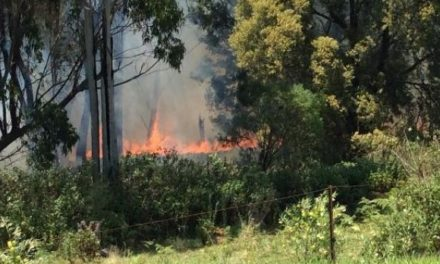 Bushfire near Spring Creek Mountain being monitored by fire crews
