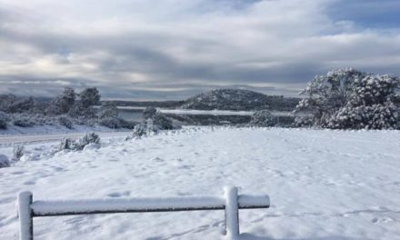 BOM forecasts heavy snow in Tasmania as spring cold front approaches