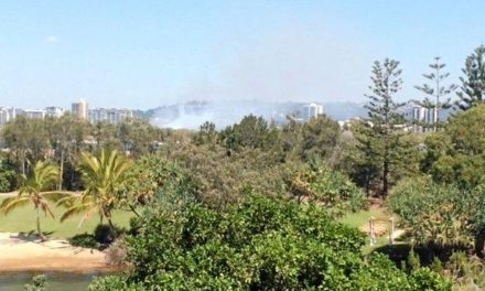 Fire breaks out, plumes of smoke near Coast CBD apartments