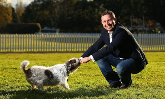 How online pet market PetCircle went from zero to $70 million turnover in six years