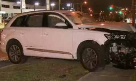 Man charged with attempted murder after allegedly hitting cop with stolen car