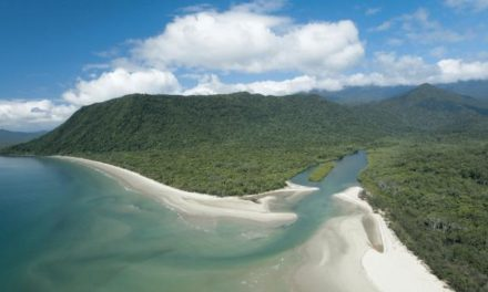 Missing fisherman's body found on edge of Daintree River