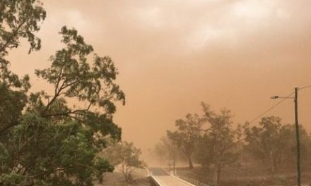 Wild Weather: Massive dust storm blankets town