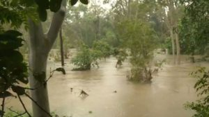 Cyclones potential off Queensland as state cops deluge of rain