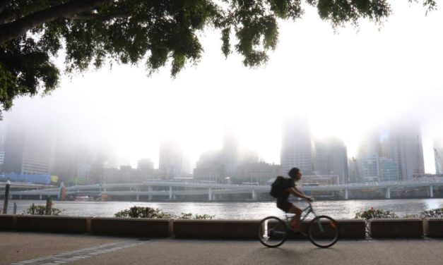 'Spectacular fog' blankets Brisbane but won't reach airport, BOM says