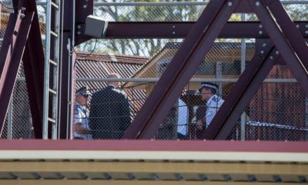 Dreamworld 'had trouble hiring staff for safety audits': inquest