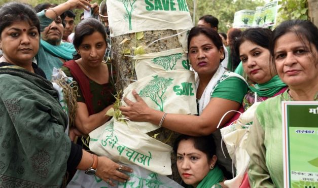 How the people of Delhi saved 16,000 trees from the axe