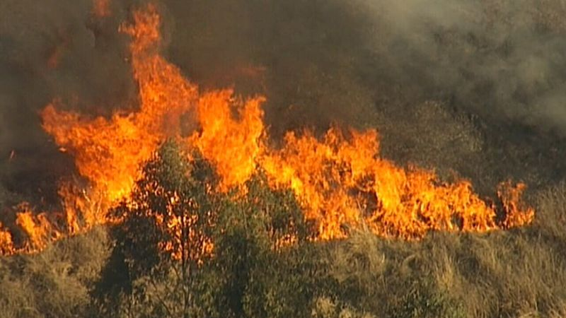 Bushfire warning: Winds trigger high danger in NSW and Queensland
