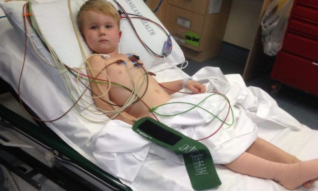 Four-year-old boy survives 'dry' snake bite on family's Sunshine Coast property