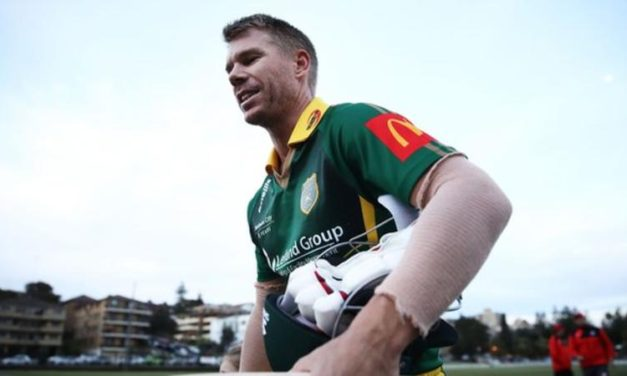 David Warner: Banned Australian walks off field after 'sledging incident' in club game