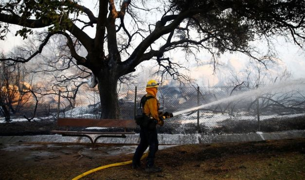 California wildfires: Number of missing leaps to 631