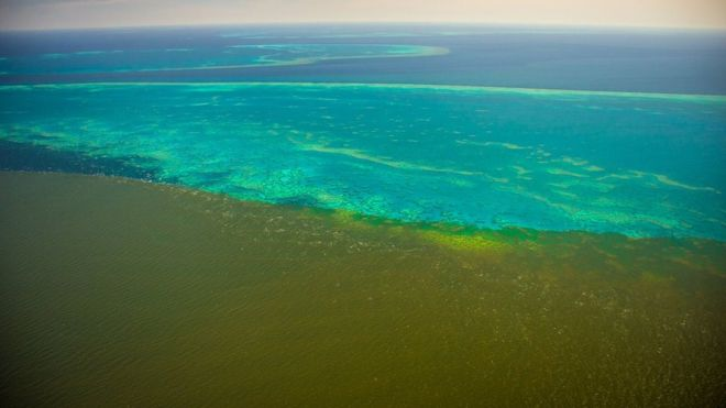 Australian floods send dirty water across Great Barrier Reef