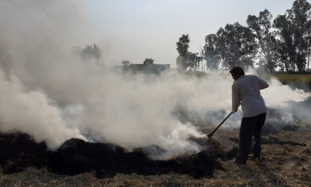 Air Quality Very Severe In Delhi Due To Stubble Burning