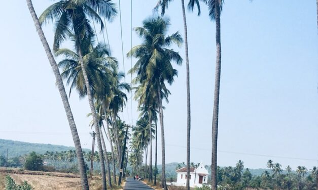 Goa Village Suspends Tourist Photography Tax